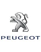 Motorecicle - Gran variedad de despieces de modelos Peugeot